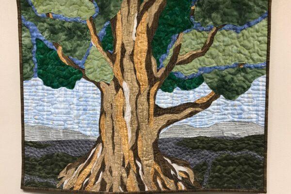 Southern Cypress $425